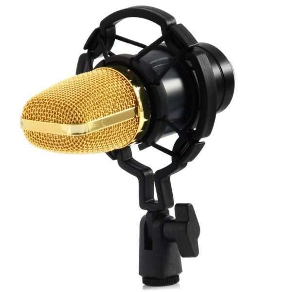 studio microphone BM 700